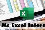 Ms. Excel Intermedio