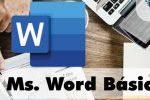 Ms. Word básico
